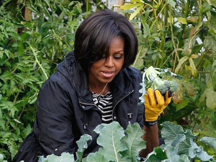obama-white-house-garden-gardenista.jpg